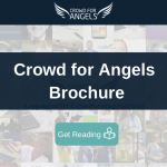 Crowd for Angels Brochure