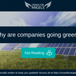 Why are companies going green?