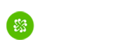 Shares - Spundge Inc.